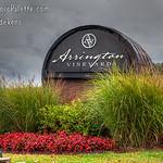 Arrington Vineyards (Arrington Tennessee )