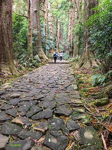 Begin the climb to Nachi Taisha.
