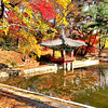 Aeryeonjong in the Secret Garden