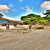 Chang Deok Gung Palace