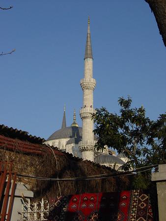 Wongs: Istanbul 2006