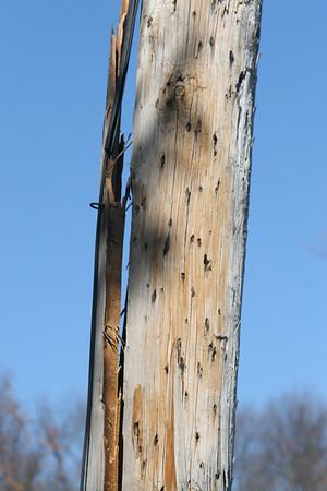 split pole