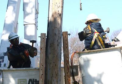 Applying braces to the cracked telephone pole