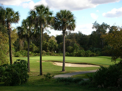 Diamond Back Golf Club - one of our favourites