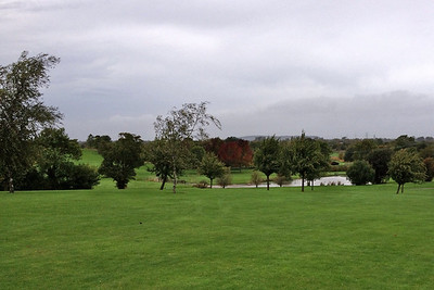 View from the first fairway across to the second with our favourite trees in the middle of the frame