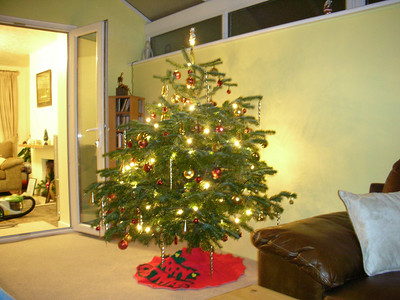 Our tree, which we loved - it looked fab
