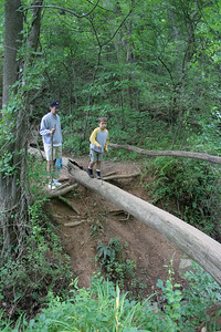 A dad and his  son cross a log bridge when a Dads class takes a hike at Oregon Ridge Nature Center, 6/2006
