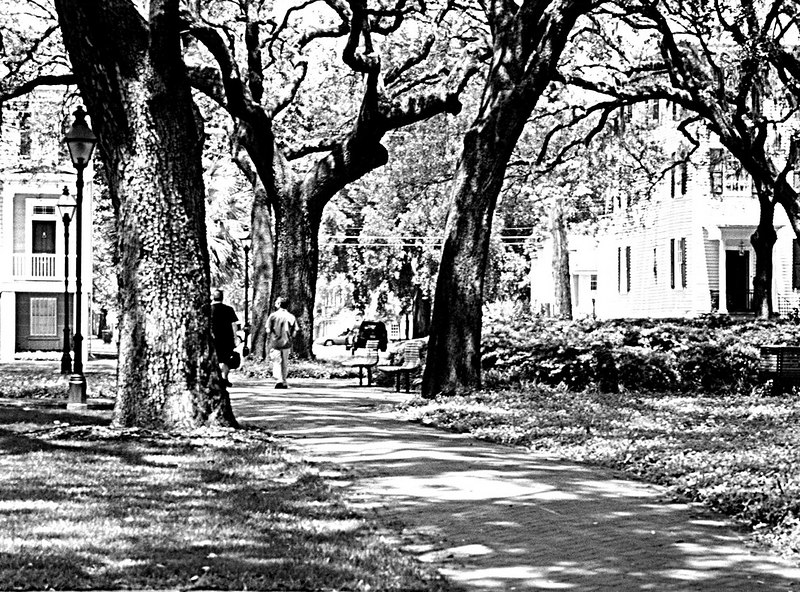 Stroll in the Park<br /> Savannah, GA