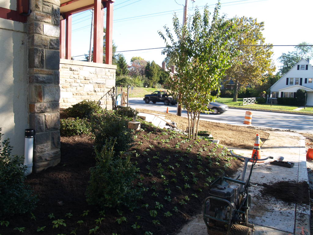 11/2/2007: landscaping in the front