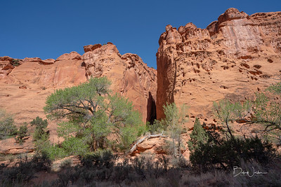 Canyon within Escalante Grand Staircase