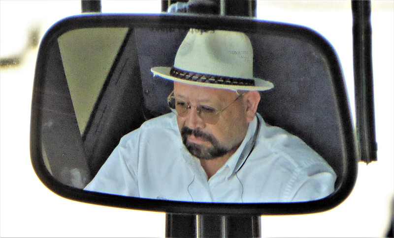 DRIVER MIRRORED by CARROLL GIFFORD