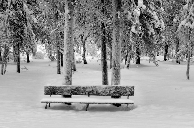 Somewhere To Sit