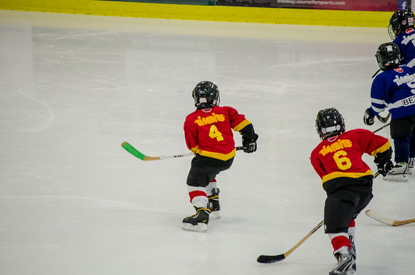 Tyke 2 Hockey Season