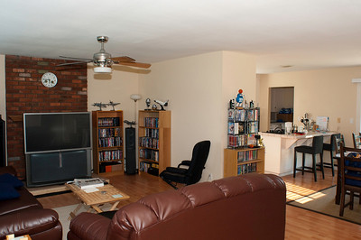 Living Room and Fence Upgrade (June 2009)