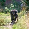 Mathew at the zoo-001