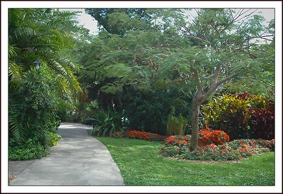 02.24.08 Heathecote Botanical Garden