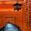 Through the Torii Gates