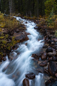 Mountain stream - Banff NP