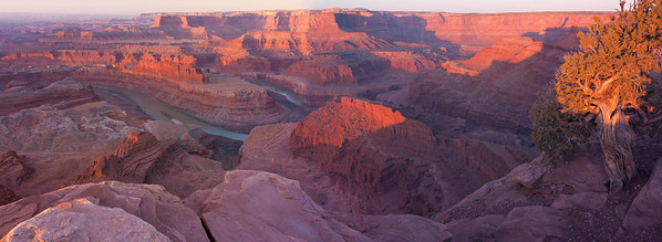 Dead Horse Point Panorama at Sunrise