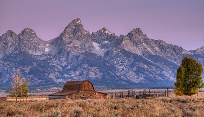 Old barn on Mormon Row at dawn.