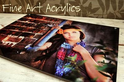 Fine Art Acrylics ML1