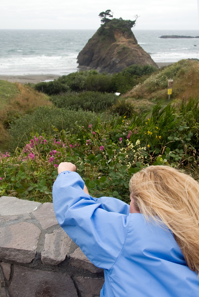 Eileen struggles to capture the flowers in the wind of Port Orford, Oregon.<br /> D200_2007-07-21DSC_2667-EileenWINDYPortOrfordFlowers-2 copy.jpg