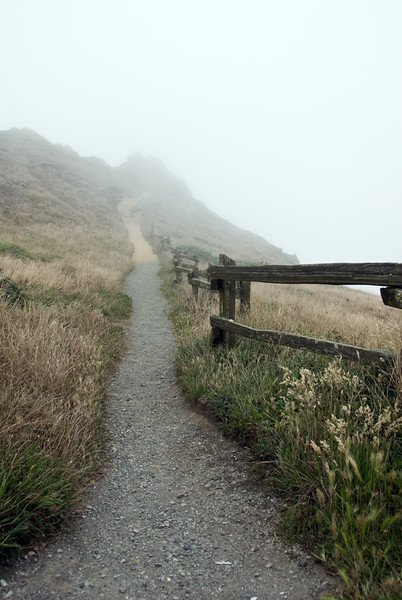 Tall version of the foggy pathway to the Ocean at Point Reyes Lighthouse, California just north of San Francisco.<br /> D200_2007-07-23DSC_2910-FoggyPathwayPointReyes-2.jpg