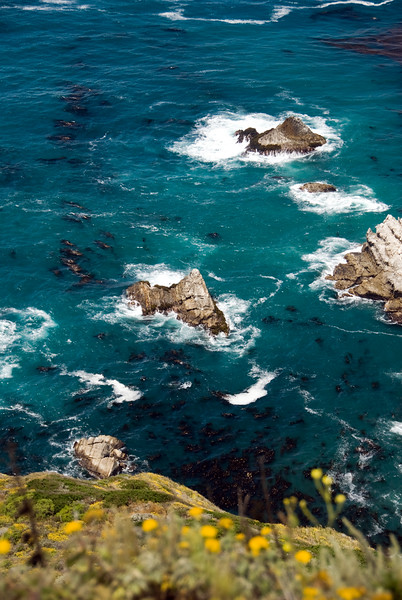Kelp in the deep blue ocean among the surf crashing on the rocks along the coast of Big Sur, CA at Hurricane Point.