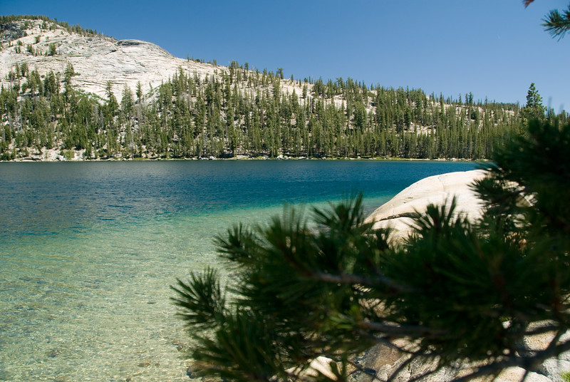 Beautiful Greens at Tenaya Lake<br /> Yosemite National Park, California<br /> <br /> Copyright © 2007 Rick Kruer<br /> rickkruer.com<br /> <br /> July 2007<br /> <br /> D200_2007-07-02DSC_0721-TenayaLakeGreens-nice-2 copy.jpg