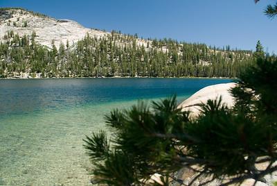 Beautiful Greens at Tenaya Lake Yosemite National Park, California  Copyright © 2007 Rick Kruer rickkruer.com  July 2007  D200_2007-07-02DSC_0721-TenayaLakeGreens-nice-2 copy.jpg