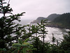 Eileen's nice frame of the pine trees and the Heceta Head lighthouse.<br /> P7201729-HecetaHeadLighthouse-2.jpg
