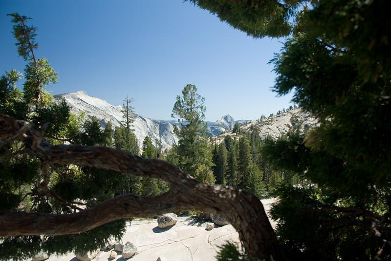 Olmsted Point<br /> Yosemite National Park, California<br /> <br /> Copyright © 2007 Rick Kruer<br /> rickkruer.com<br /> <br /> July 2007<br /> <br /> D200_2007-07-02DSC_0818-OlmstedPoint-2 copy.jpg