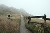 Foggy Pathway to the Ocean<br /> Point Reyes Lighthouse, California<br /> July 2007<br /> <br /> Copyright © 2007 Rick Kruer<br /> rickkruer.com<br /> <br /> D200_2007-07-23DSC_2909-PointReyesFoggyPathway-2.psd