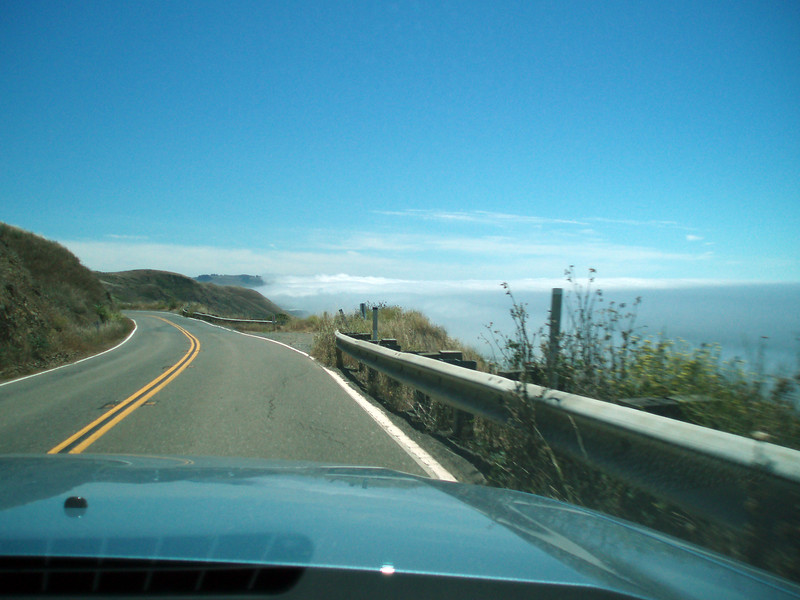 The fog is rolling in off the coast of California as we drive south on CA 1 along the coast.<br /> P7231925-RoadCA1Fog-2 copy.jpg