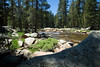 The Tuolumne River on the east side of Yosemite turned out to be a very peaceful, quite spot on CA120, our drive through Yosemite Nat'l Park.<br /> <br /> D200_2007-07-02DSC_0669-YosemiteTuolumneRiver-nice-2.JPG