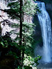 Eileen's great photo of the mist from the Salt Creek Falls.<br /> <br /> P7041259-SaltCreekFallsMistTall-2.jpg