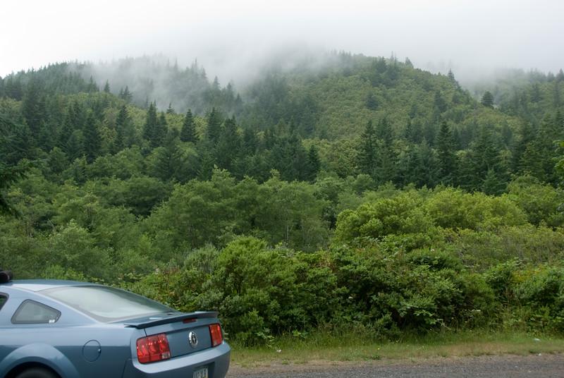 The fog is thick here along US101 as we head south toward Cape Sebastian, Oregon.<br /> D200_2007-07-21DSC_2697-FogUS101Road-2.jpg