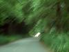 P6303098-RoadUs101Streaky-nice-2