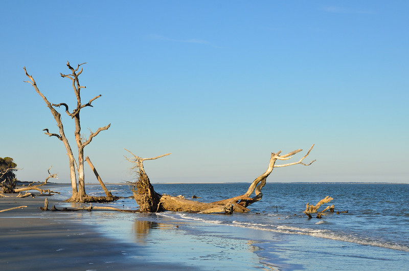 Beach at Hunting Island State Park