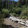 Stream crossing, Hiking the Sawtooth Wilderness Area, Iron Creek Trail, Alpine Lake