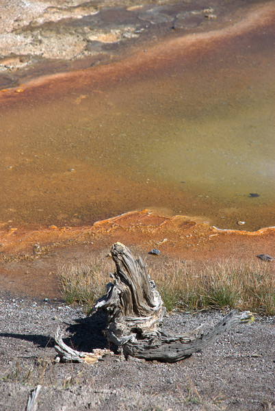 Geothermal features along Firehole Lake Drive