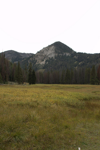 Mountain at the headwaters of the Salmon River.
