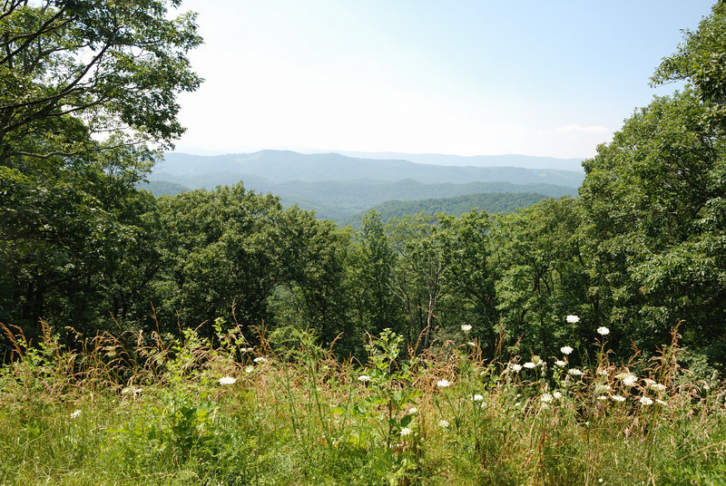 Shenandoah Mountain Pass, Virginia