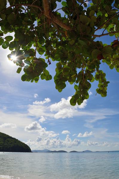 Maho Bay on St. John.