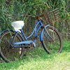 Bicycle at rest.