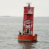 Buoy with Cormorant