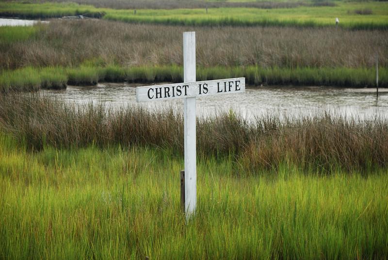 Cross in the Marsh