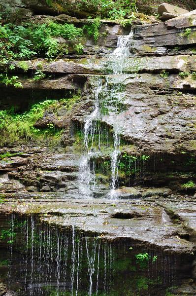 Pine Creek Rail Trail - Turkey Path/Four Mile Run Waterfall
