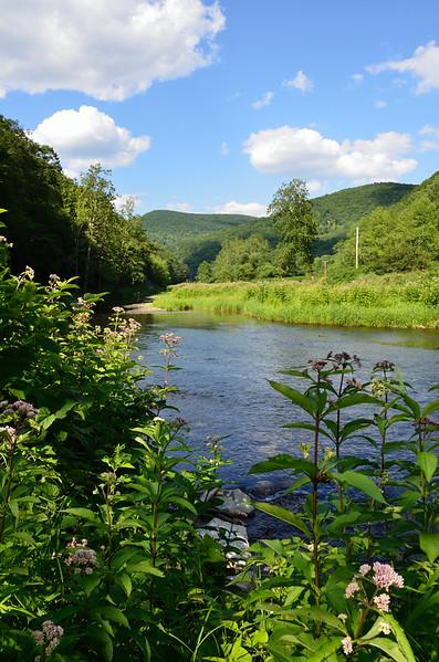 """Pine Creek - <a href=""""http://en.wikipedia.org/wiki/Leonard_Harrison_State_Park"""">http://en.wikipedia.org/wiki/Leonard_Harrison_State_Park</a>"""