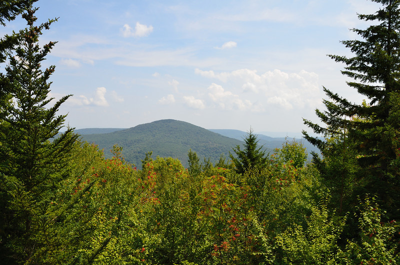 Highland Scenic Highway through the Monongahela National Forest.